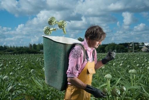 legumes-project-CreditVincent-Gouriou